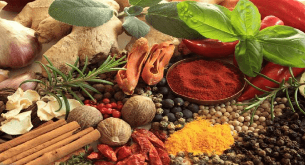 AYURVEDIC LIVING NUTRITION.png